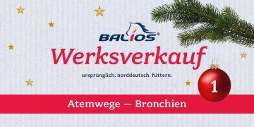 Weihnachtlicher Werksverkauf: 1. Dezember
