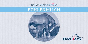 Balios DeichKrone Fohlenmilch