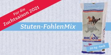 Exklusive Züchter-Angebote: Stuten-FohlenMix