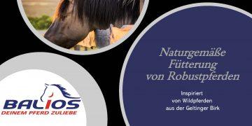 Vortrag: Naturgemäße Fütterung von Robustpferden von Tierärztin Rike Lüthje